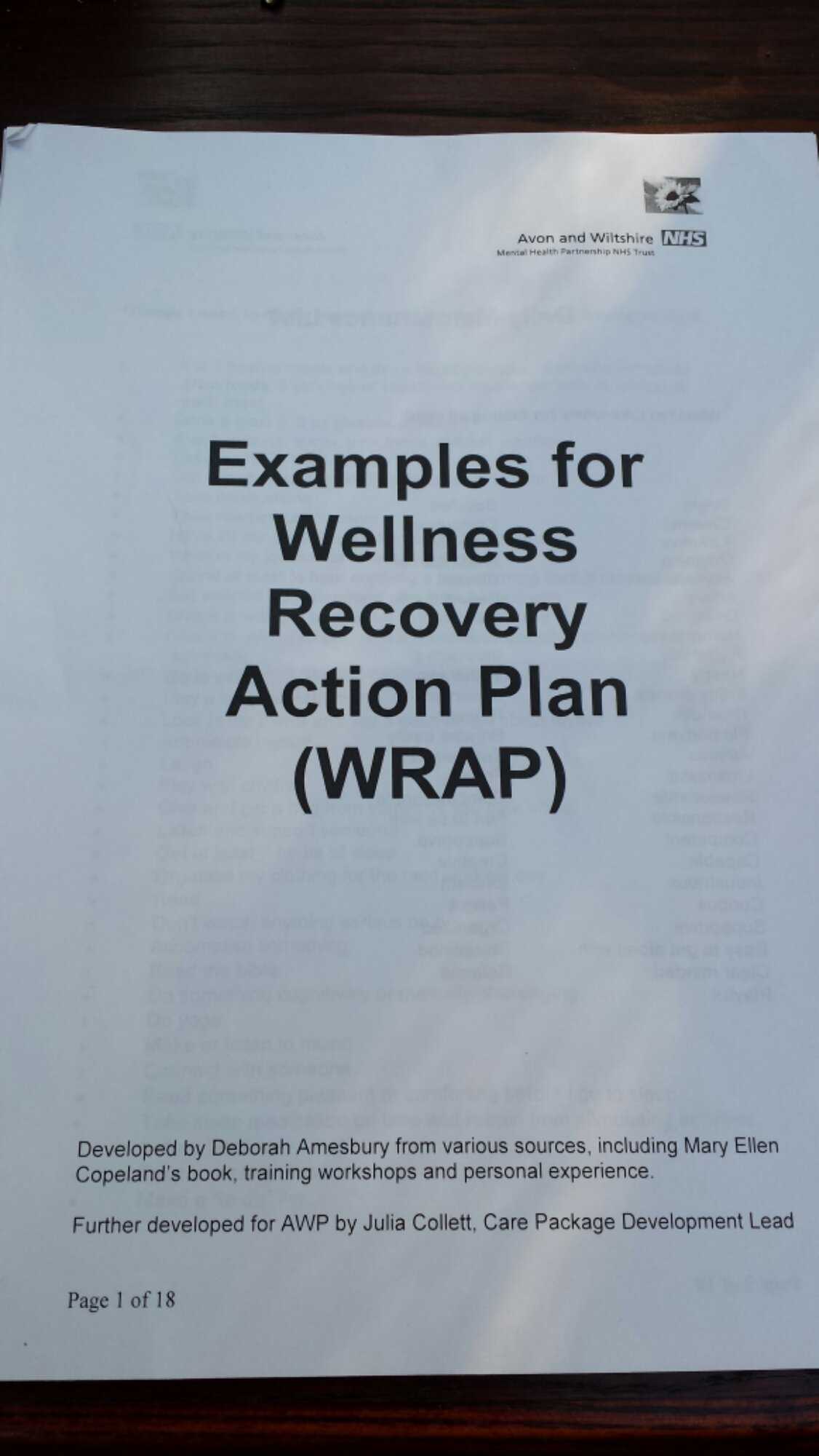 Sample WRAP (Wellness Recovery Action Plan) : Life after BPD